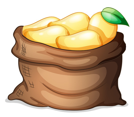 market gardening: Illustration of a sack of ripe mangoes on a white background