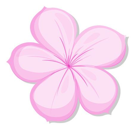 pinkish: Illustration of a five-petal pink flower on a white background Illustration