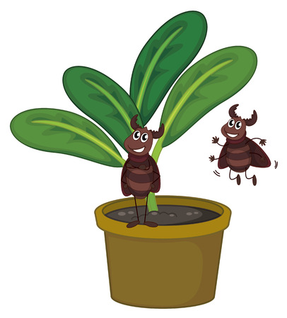 Illustration of a plant with two playful insects on a white background Vector