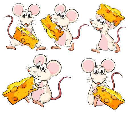 Illustration of a group of mice carrying slices of cheese on a white background Stock Vector - 26273678