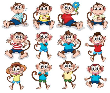 Ilustración de los monos con diferentes emociones en un fondo blanco
