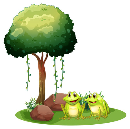 Illustration of the two smiling frogs beside the tree on a white background Illustration