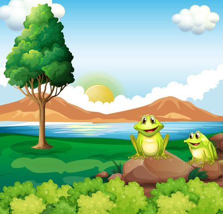 Illustration of the two frogs above the rock near the river Vector