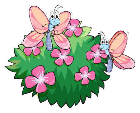 Illustration of the two butterflies near the plant with pink flowers on a white background Vector