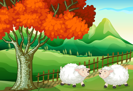 sheeps: Illustration of the two sheeps under the tree