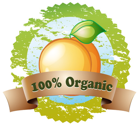 Illustration of an organic label with a ripe orange on a white background Vector