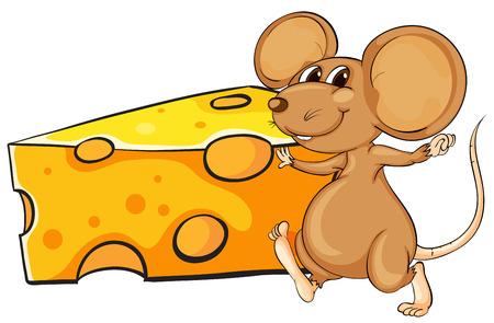 흰색 배경에 치즈의 큰 조각 옆에 갈색 마우스의 그림 일러스트