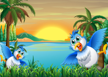 sunset lake: Illustration of the two colorful birds at the riverbank Illustration