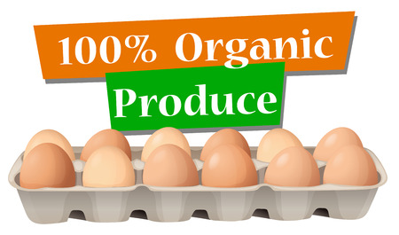 eggtray: Illustration of an organic produced eggs on a white background Illustration