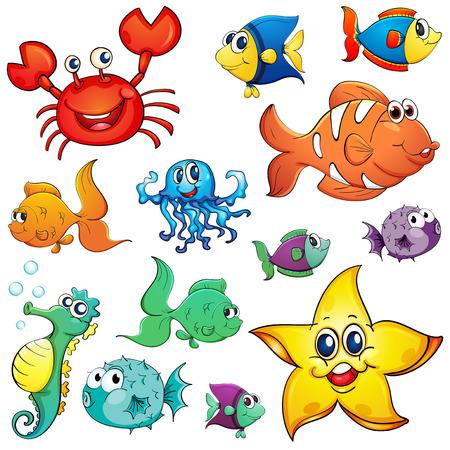 Illustration des différentes créatures de la mer sur un fond blanc