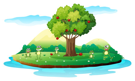 tree frogs: Illustration of an island with frogs on a white background
