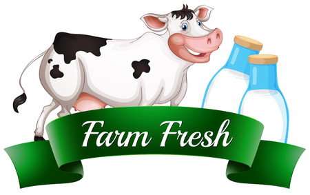 milking: Illustration of a cow with a farm fresh label on a white background