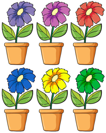 flowering plant: Illustration of the pots with flowering plants on a white background
