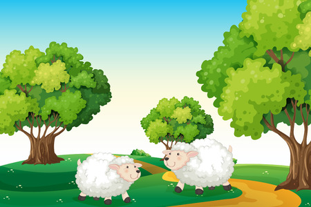 hilltop: Illustration of the two white sheeps at the hilltop