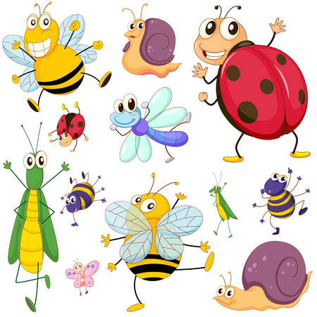 Illustration of a group of insects on a white background Vector