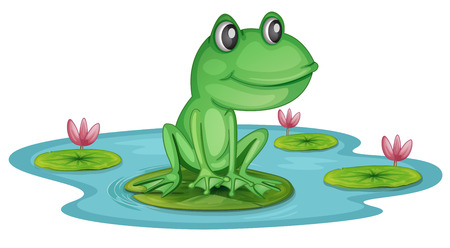 Illustration of a pond with a frog on a white background