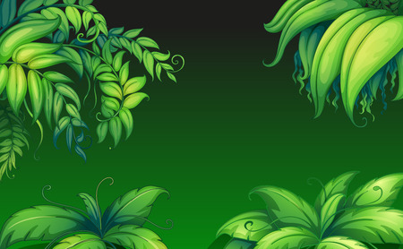 leafy: Illustration of the green leafy plants Illustration
