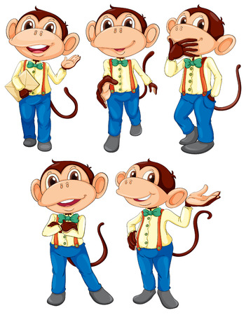 blue jeans: Illustration of the five monkeys wearing blue jeans on a white background Illustration