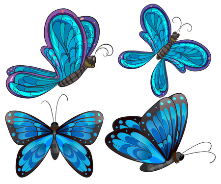 hindwing: Illustration of the four butterflies on a white background Illustration