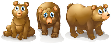 brownish: Illustration of the three brown bears on a white background