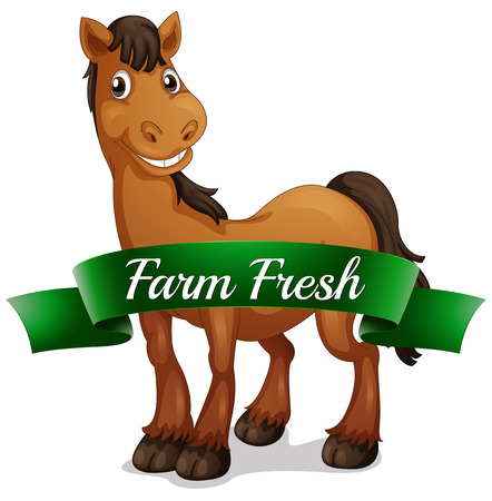 sides: Illustration of a smiling horse with a farm fresh label on a white background
