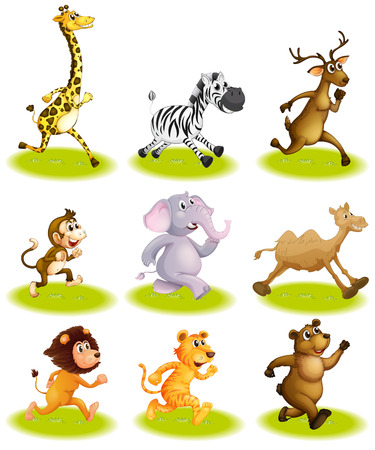 Illustration of the running animals on a white background Vector