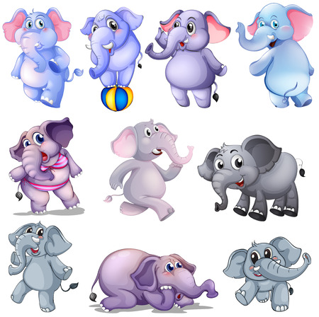 animals clipart: Illustration of a group of elephants on a white background Illustration