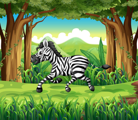 Illustration of a zebra at the jungle Vector