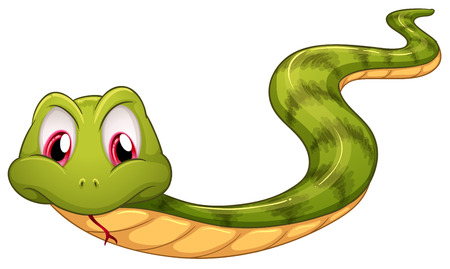 Illustration of a green snake on a white background Vector