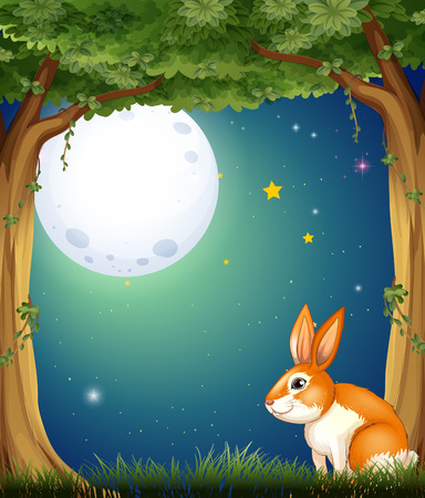Illustration of a bunny at the forest under the bright fullmoon Vector