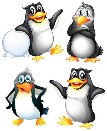 pinguino caricatura: Ilustraci�n de los cuatro ping�inos juguetones sobre un fondo blanco
