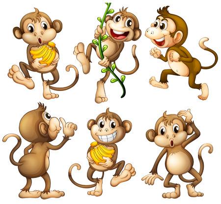 platano caricatura: Ilustración de los monos juguetones silvestres sobre un fondo blanco Vectores