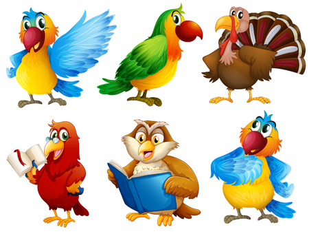 libro de cuentos: Ilustraci�n de las criaturas con plumas de colores sobre un fondo blanco