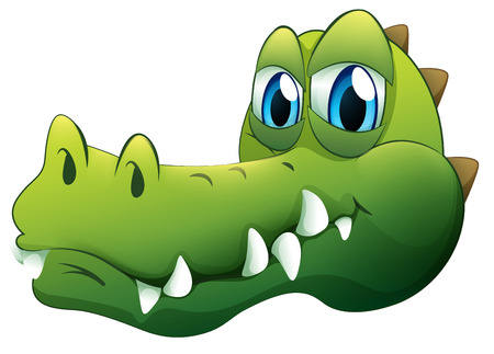 Illustration of a head of a crocodile on a white background Vector