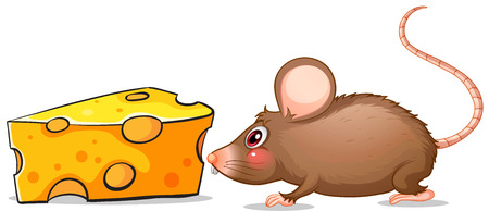 Illustration of a mouse and a slice of cheese on a white background Vector