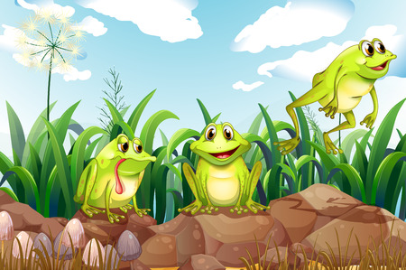 Illustration of the three frogs above the rocks Vector