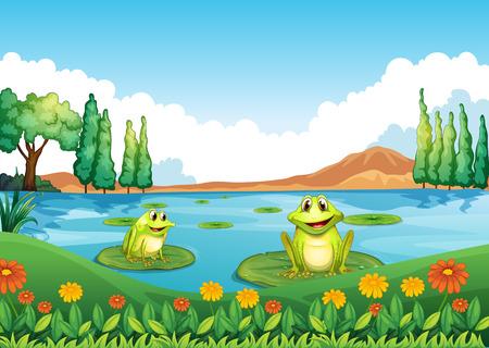 池の 2 つの遊び心のあるカエルのイラスト