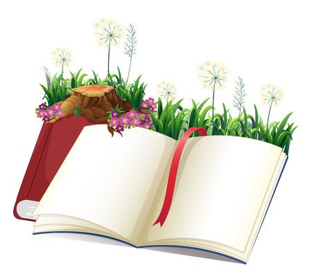 libro de cuentos: Ilustraci�n de un libro de cuentos vac�o sobre un fondo blanco