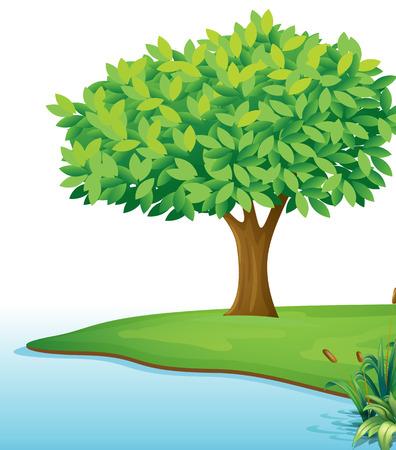 Ilustración de un árbol cerca de la masa de agua sobre un fondo blanco Ilustración de vector