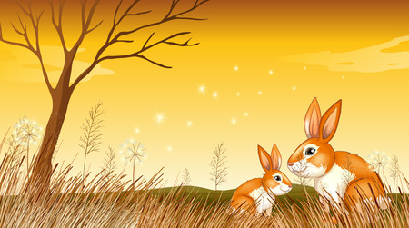 Illustration of the two bunnies near the grasses Vector