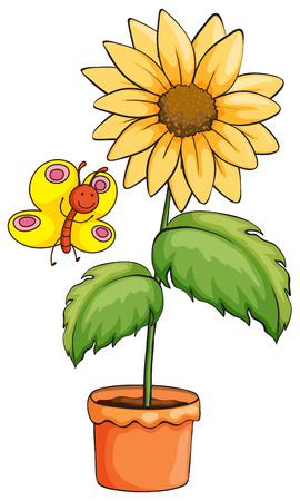 Illustration of a sunflower and a butterfly on a white background Vector