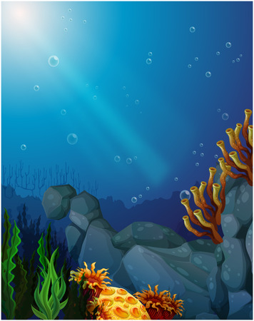 Illustration of the corals and seaweeds under the sea Vector