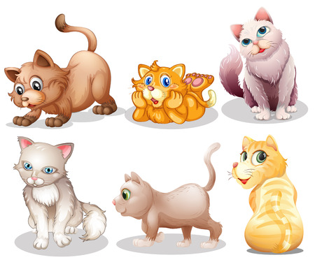 Illustration of the playful cats on a white background Vector