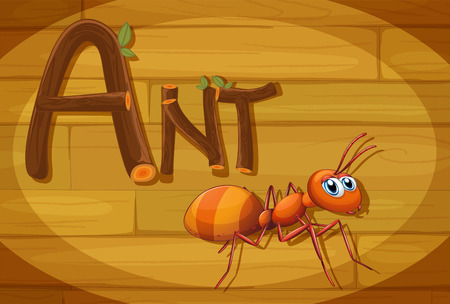 red ant: Illustration of a wooden frame with an ant Illustration