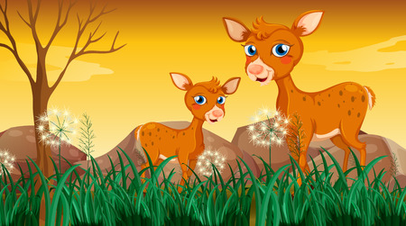 noontime: Illustration of the two deers near the grass