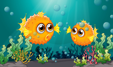 puffer fish: Illustration of the two puffer fishes under the sea Illustration