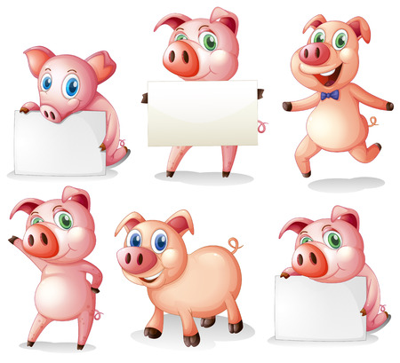 Illustration of the pigs with empty signboards on a white background Vector
