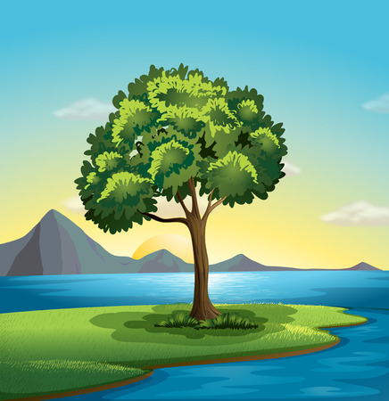 Illustration of a tree near the ocean Vector
