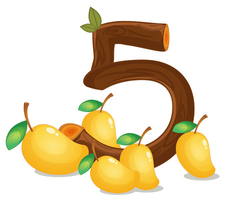 cartoon numbers: Illustration of the five mangoes on a white background Illustration