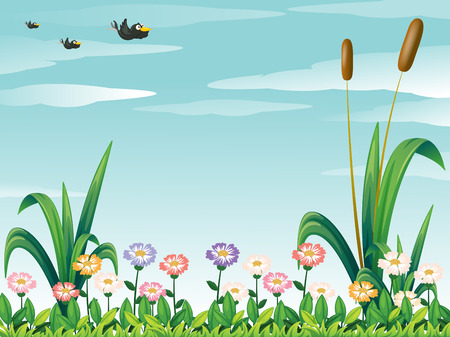 fresh flowers: Illustration of a garden with fresh flowers and the birds in the sky